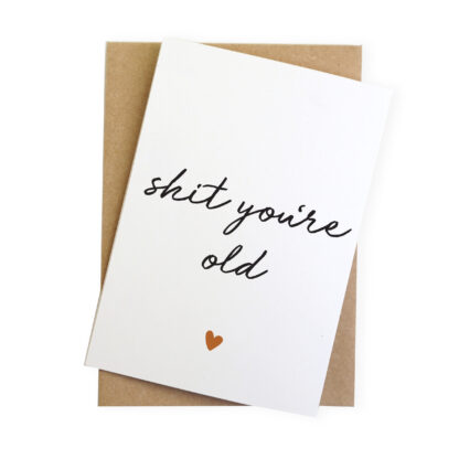 shit you're old rude birthday card for a friend
